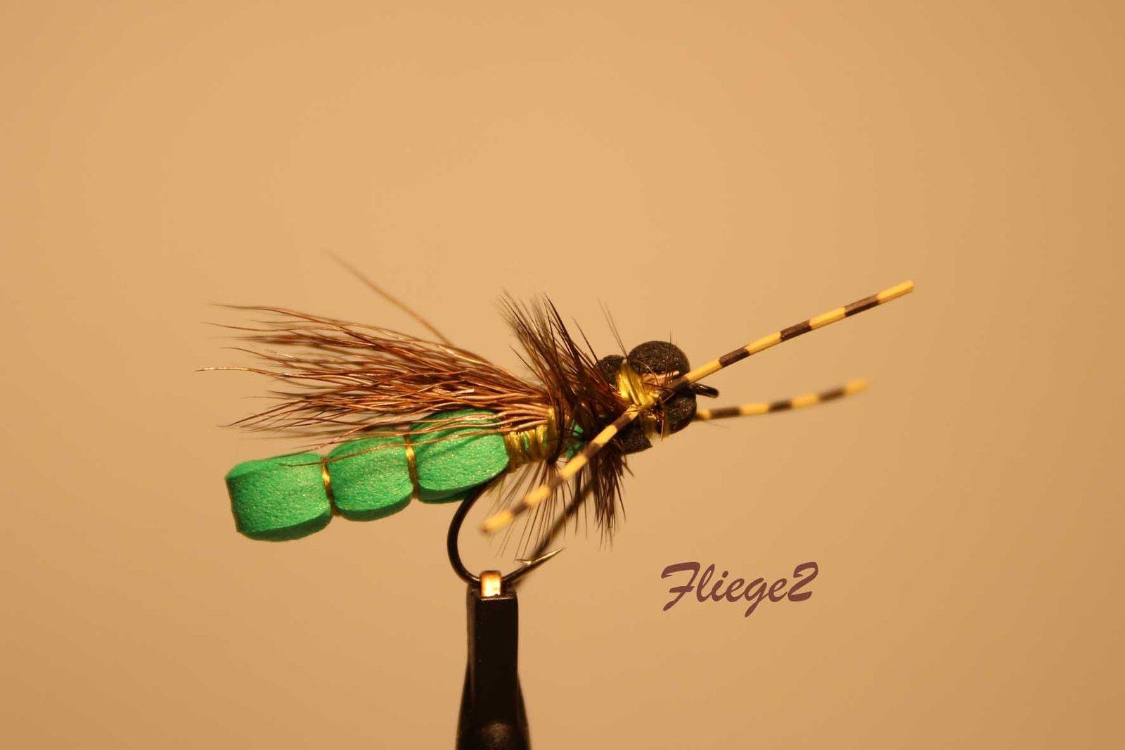 Fliege2_IMG_1784.jpg