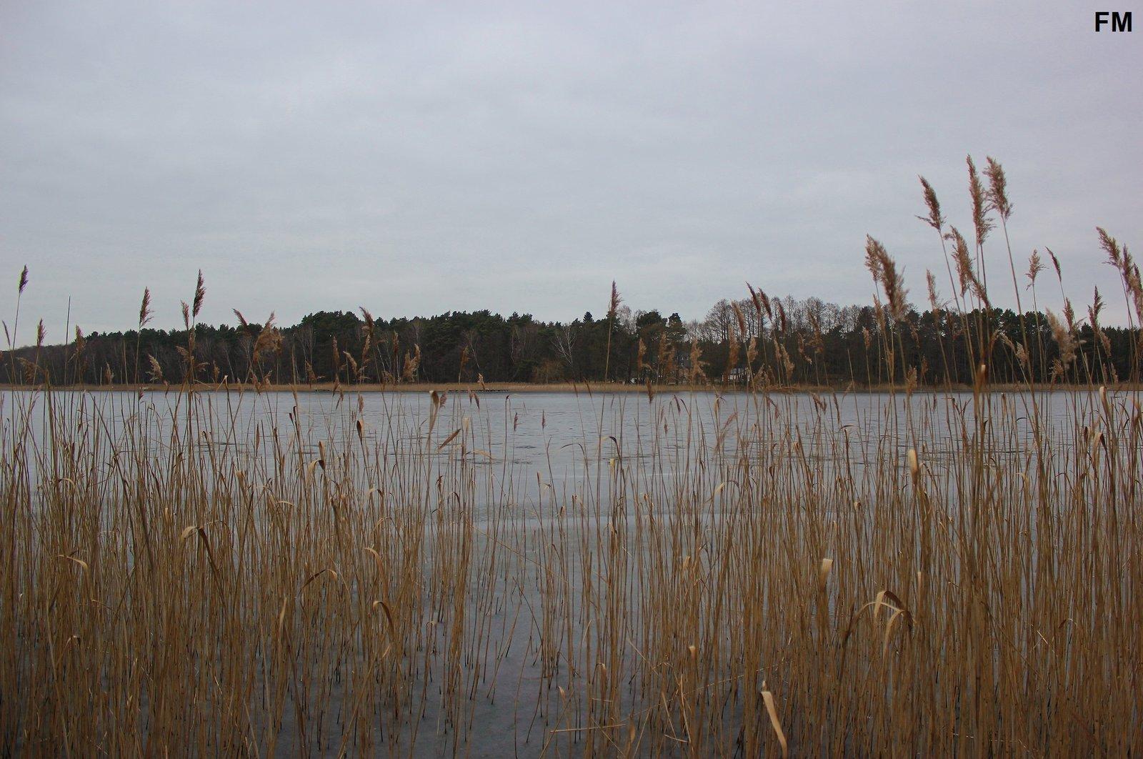 Großer Glubigsee (1).JPG