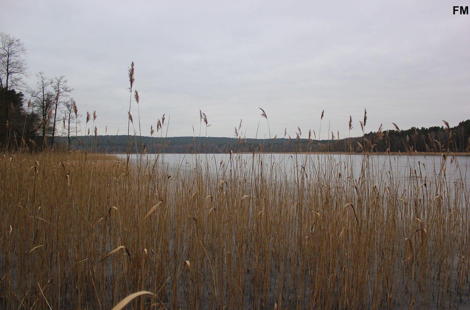 Großer Glubigsee (5).JPG