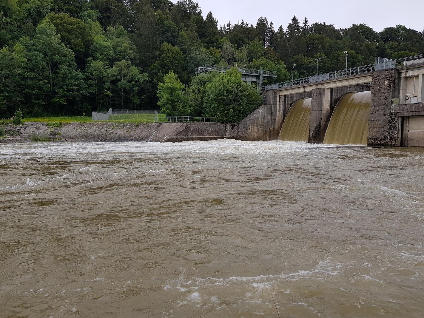 Iller_Hochwasser_August.jpg