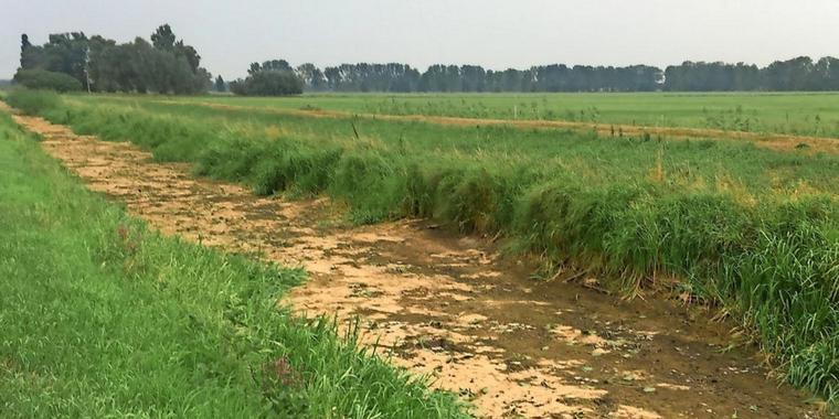 Kilometerweit-kein-Wasser-mehr-in-der-Jaeglitz_big_teaser_article.jpg