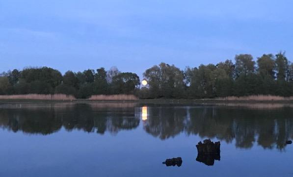 Mondaufgang (c) JEns.jpg