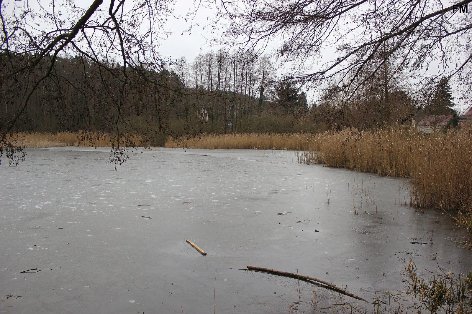 Petersdorfer See bei Petersdorf (2).JPG