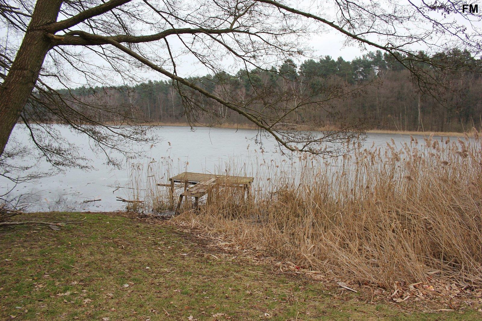 Petersdorfer See bei Petersdorf (4).JPG