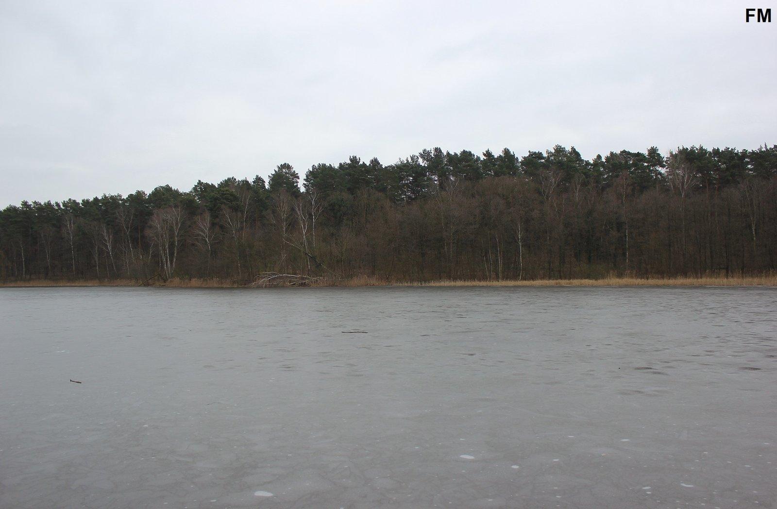 Petersdorfer See bei Petersdorf (7).JPG