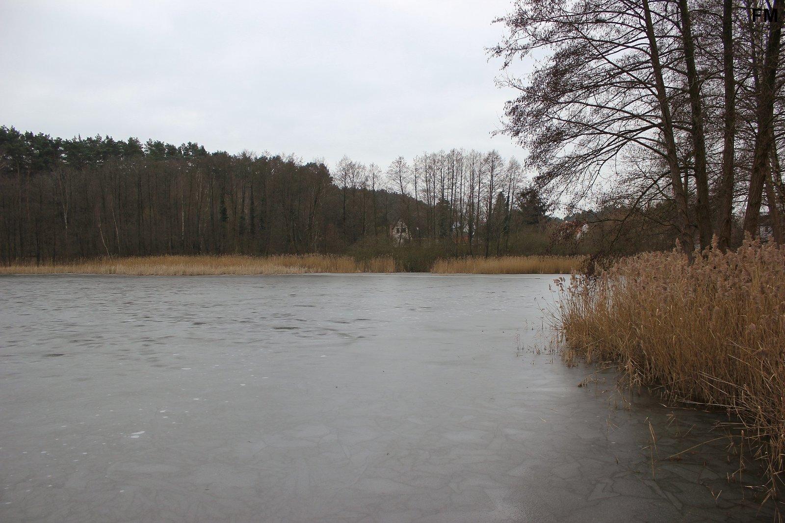 Petersdorfer See bei Petersdorf (8).JPG