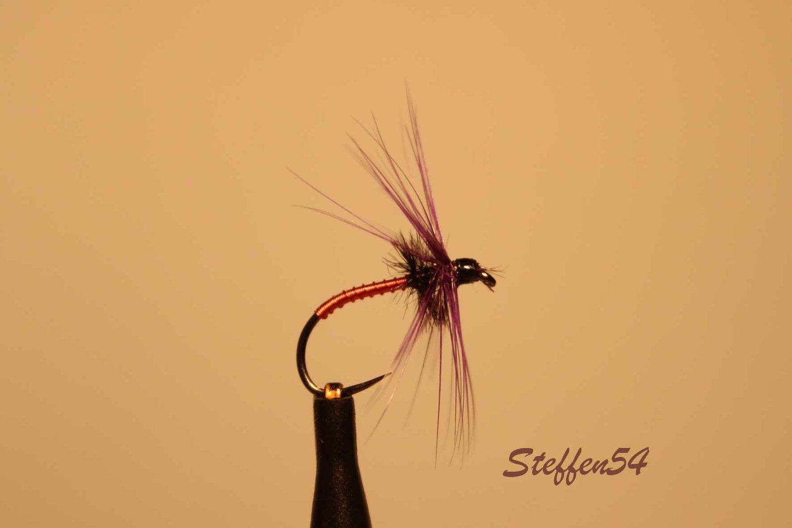 Steffen54_IMG_1769.jpg