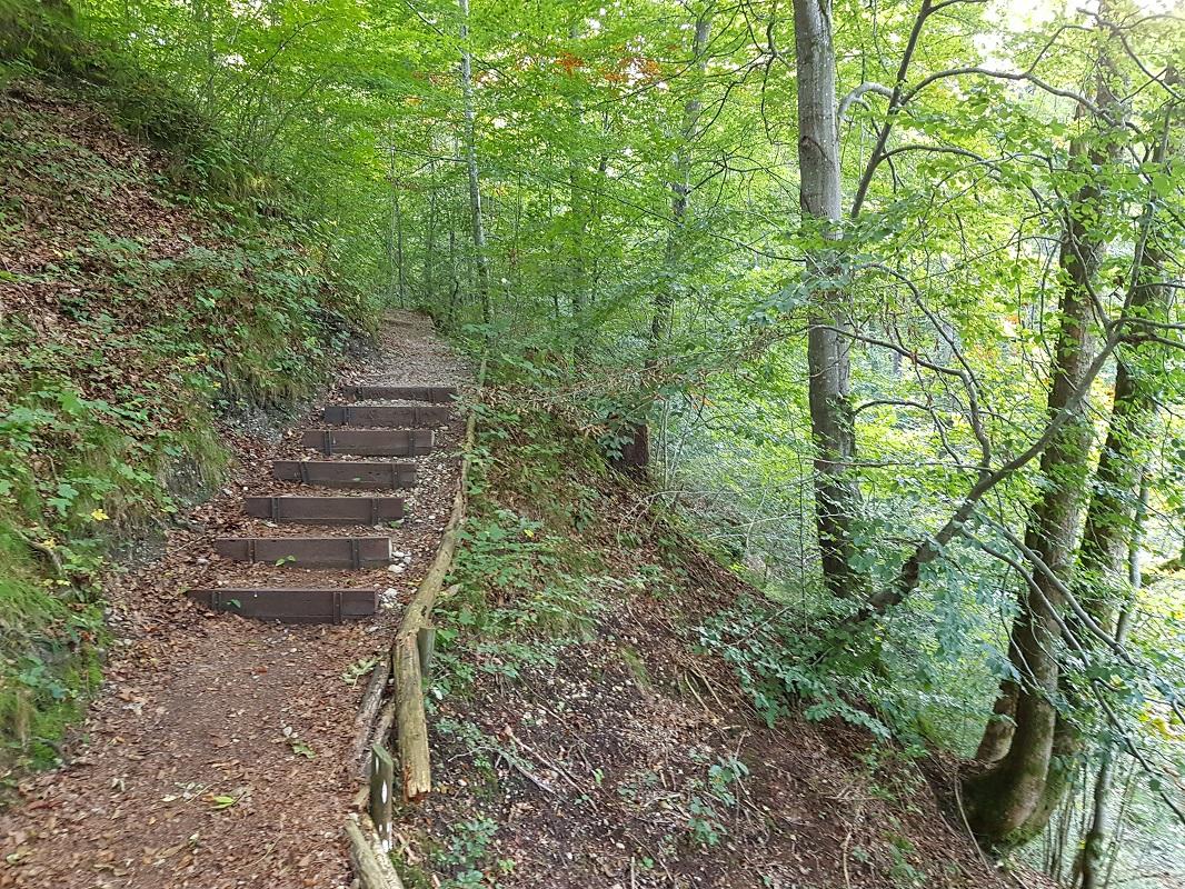 Wanderweg_September.jpg