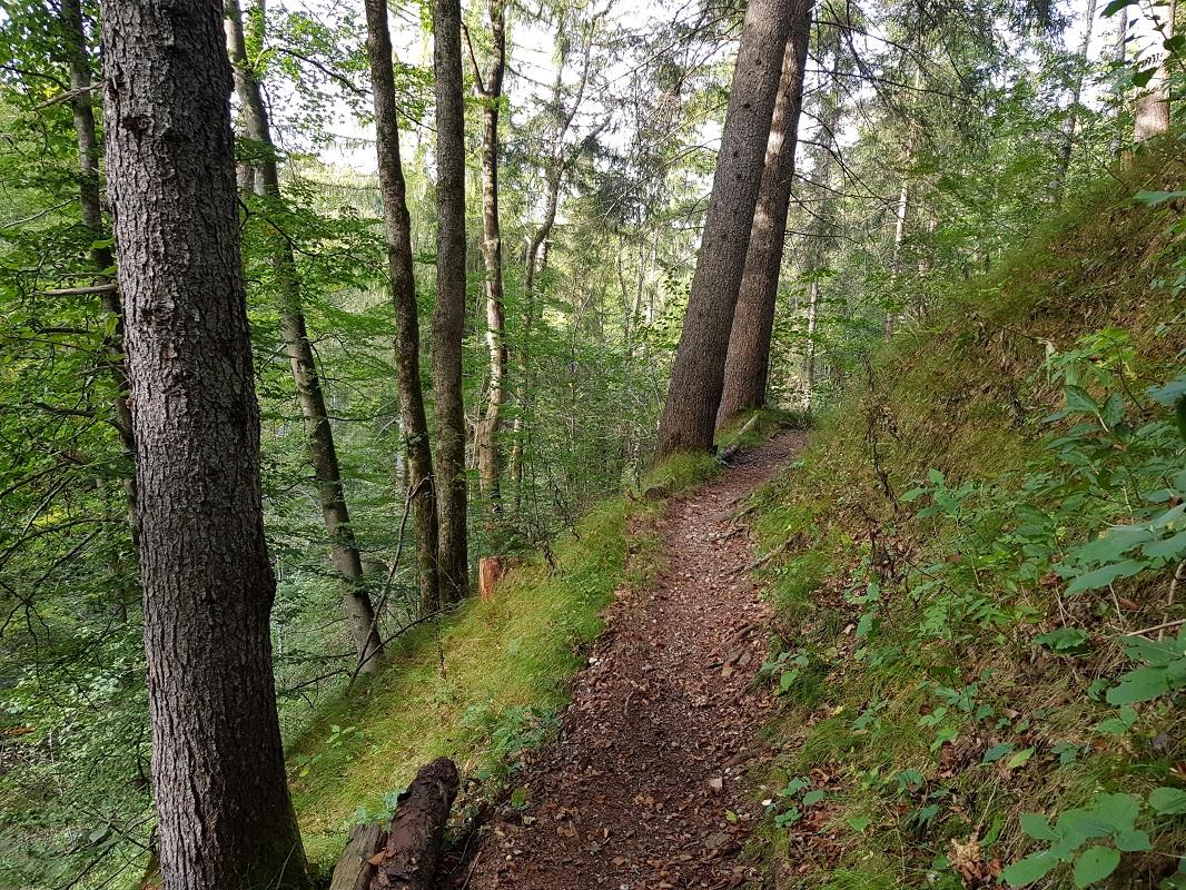 Wanderweg_September_02.jpg