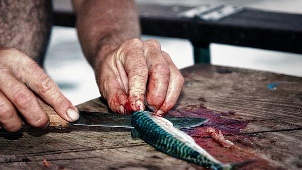 Filets schneiden