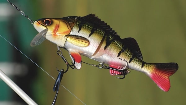 Swimbait Tackle Hecht