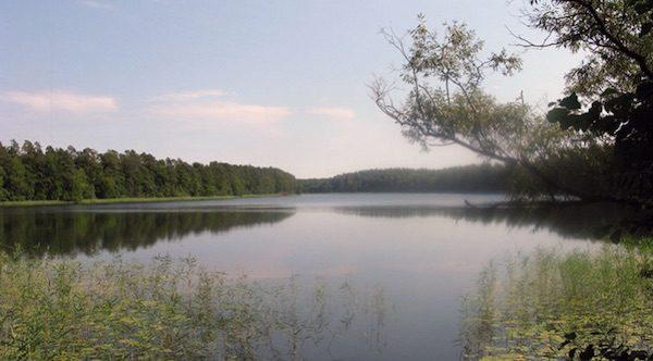 Blick auf den Dreetzsee
