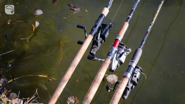 Angelruten Friedfischangeln