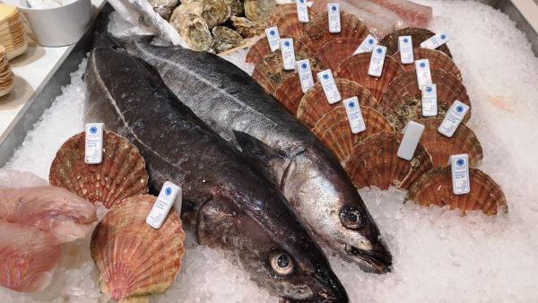 Frischer Fisch und Meeresfrüchte auf der Fish International