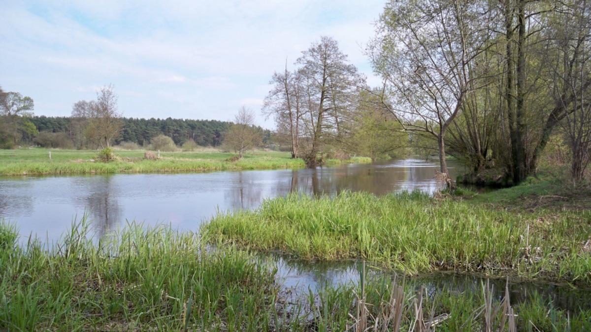 Hechtangeln im Fluss