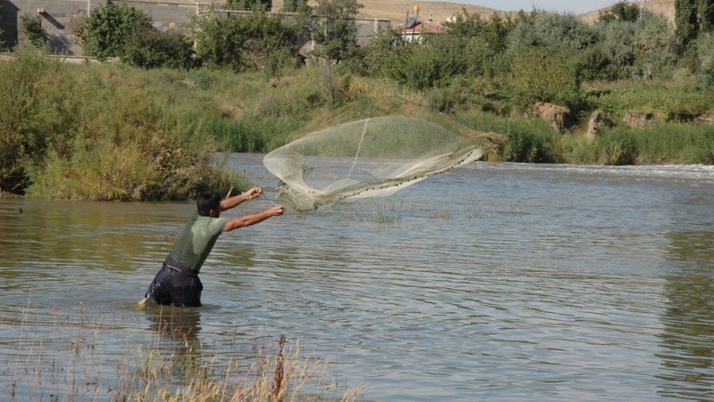 Wurfnetz Köderfischfang