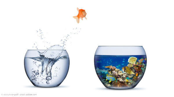 Goldfisch springt