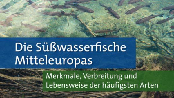 Süßwasserfische Mitteleuropas